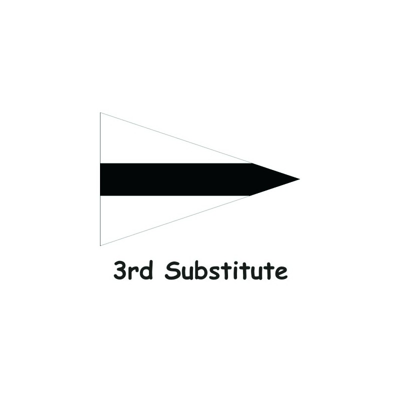 Clearance Code Flags - 3rd Substitute