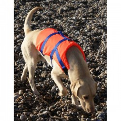 Pet Buoyancy Aid