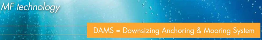 DAMS Downsizing